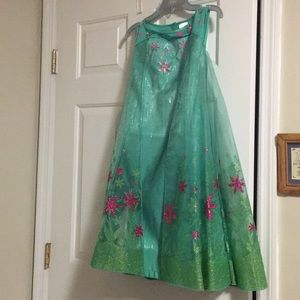 Frozen Ever after costume dress